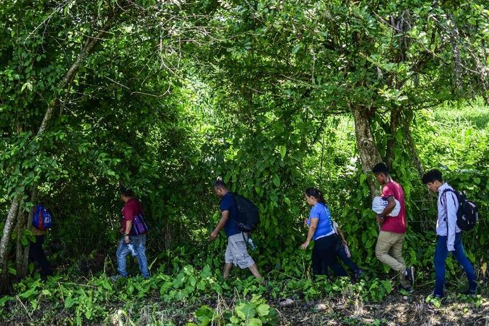 Central American migrants heading for the US attempt to avoid detection by Mexican migration authorities at the outskirts of Huixtla in Chiapas state
