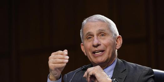 Ex-Bush Strategist Puts GOP Obsession With Anthony Fauci Down To 1 Thing