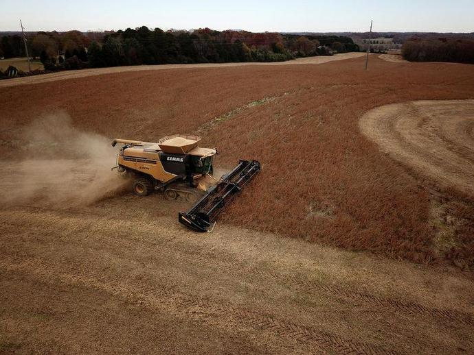 FILE PHOTO: Farmer Lucas Richard of LFR Grain harvests a crop of soybeans at a farm in Hickory