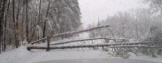 Winter storm kills one, knocks out power to 310,000 in U.S. Southeast