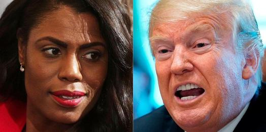 Omarosa Says Donald Trump Hit On Her, Too