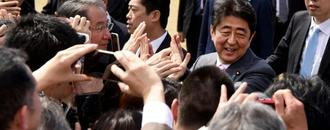Japan scraps cherry blossom party amid Abe cronyism criticism