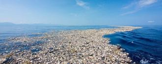 Pacific plastic dump far larger than feared: study