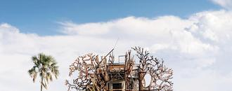 More Inside A New Safari Lodge Treehouse Tucked Away in Botswana