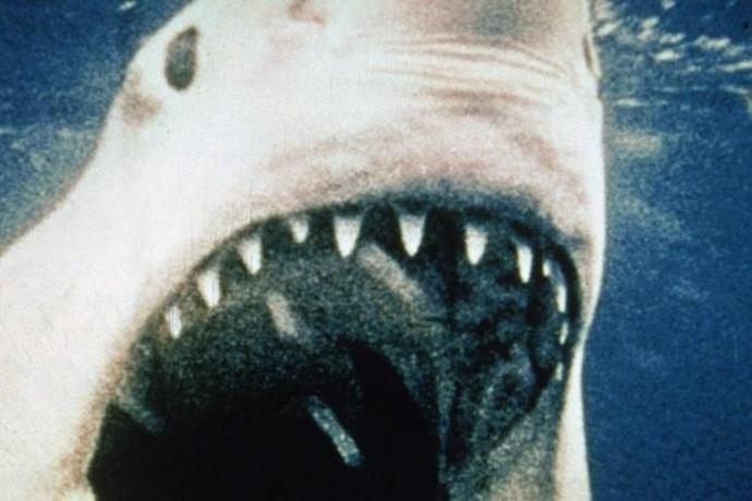 Jaws Soundtrack Reissue Announced